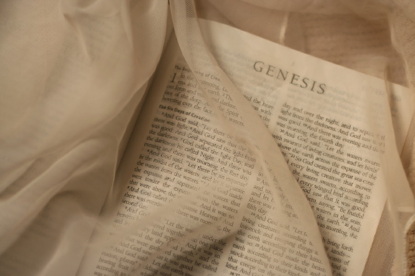 【世界のベストセラー】聖書の中における麻