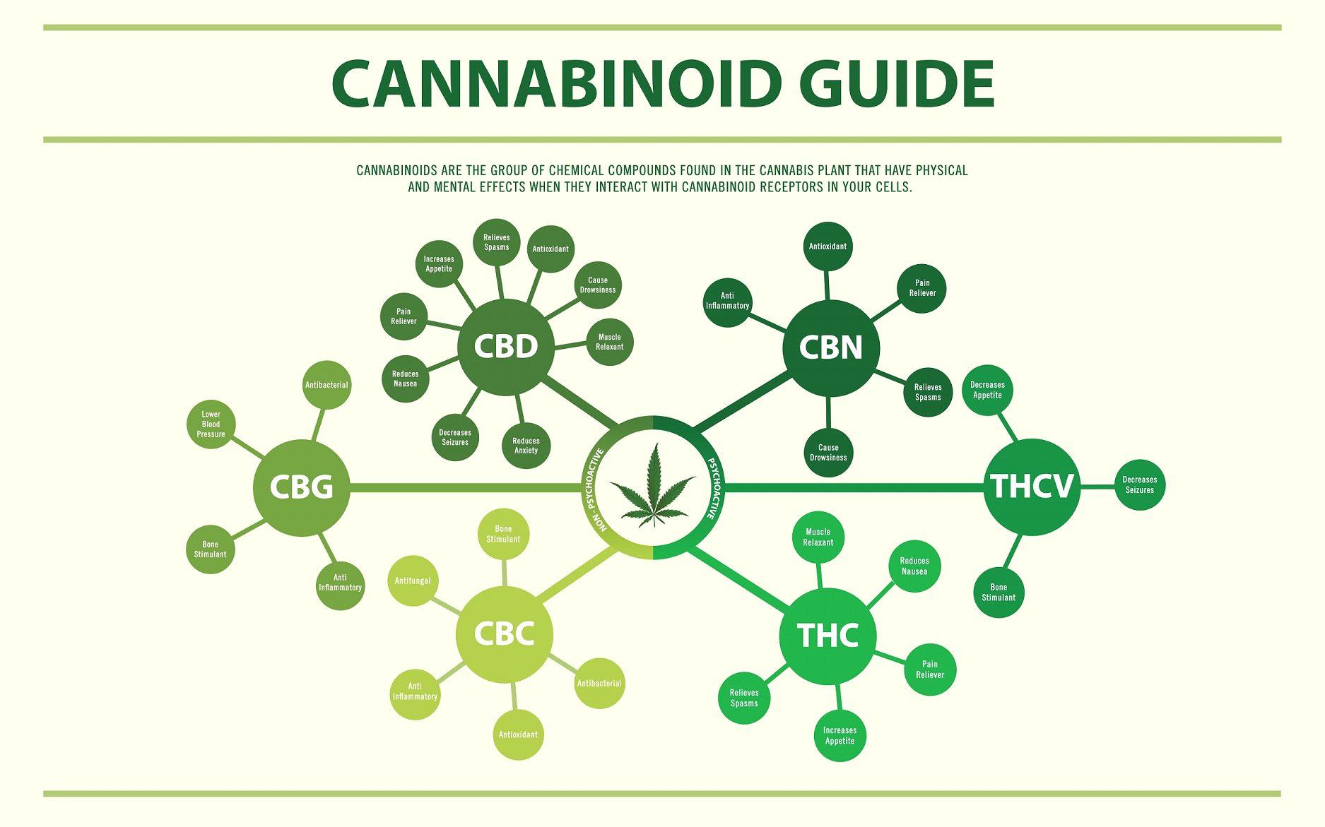 100数種類の植物性カンナビノイドと特徴