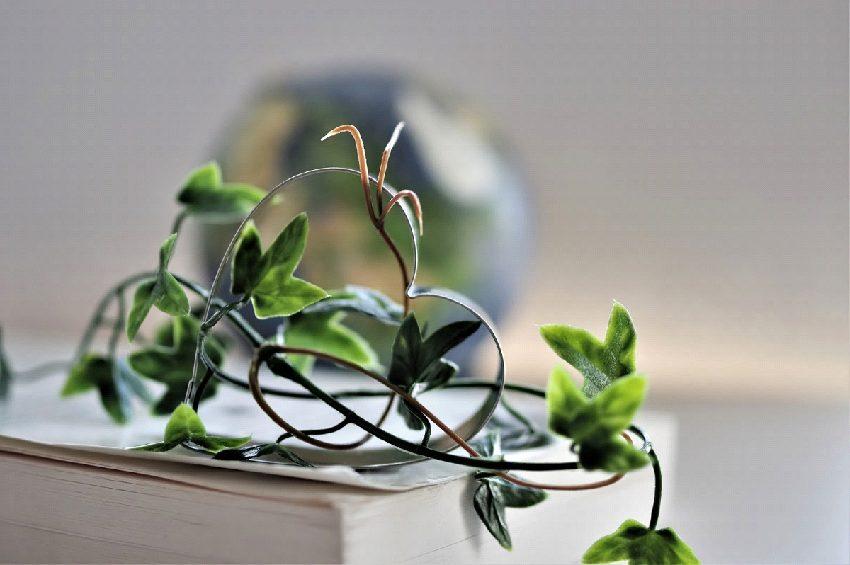 【エネルギー・3D プリンター】期待される麻のサスティナビリティⅡ